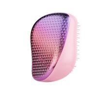 Compact Styler Hairbrush