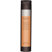 Lernberger & Stafsing Shampoo For Dry Hair 250ml