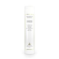 Shampoo Anti Flake & Anti-Itch
